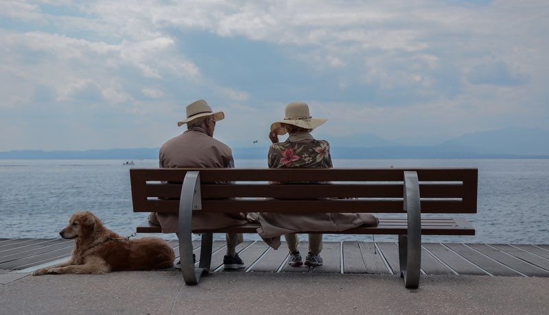 Elderly couple sat on a bench looking out to sea
